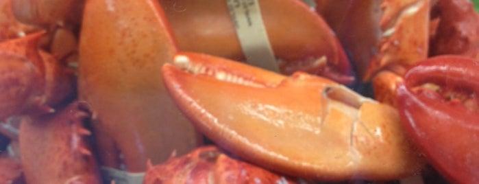 Lusty Lobster is one of Locais salvos de Lizzie.