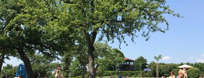 Freibad Entringen is one of สถานที่ที่ Jule ถูกใจ.