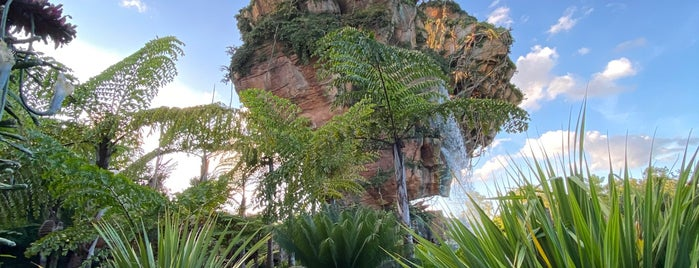 Pandora - The World of Avatar is one of Fernando Viana : понравившиеся места.