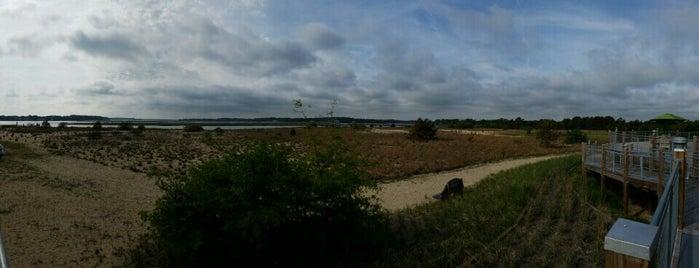 brock environmental center is one of Orte, die Dawn gefallen.