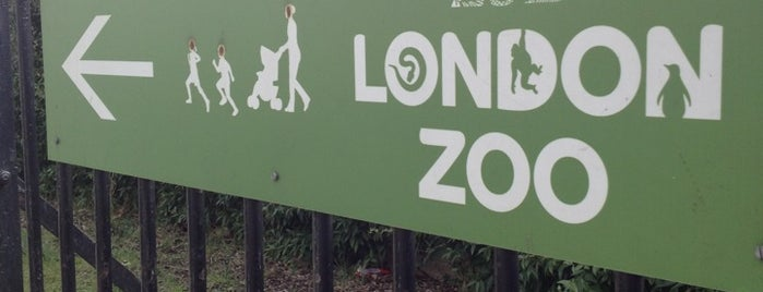 ZSL London Zoo is one of United Kingdom.