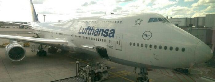 Lufthansa Flight LH 754 is one of Havalimanı..