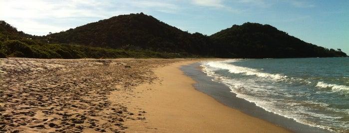 Praia do Buraco is one of A fazer Bal. Camboriú.