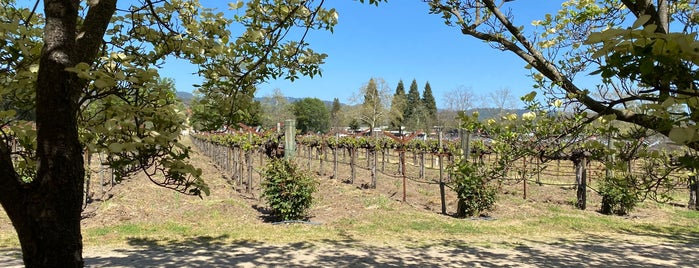 Salvestrin Estate Vineyard and Winery is one of Napa.