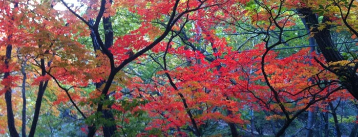 Bukhansan National Park is one of Posti che sono piaciuti a Colin.