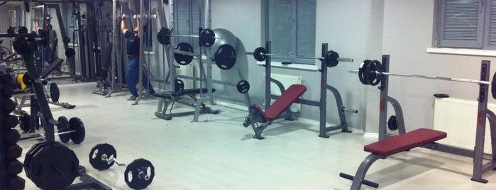 Sporty Spor ve Sağlıklı Yaşam Kulübü is one of Çankaya'da Spor Salonları / Gyms in Çankaya.