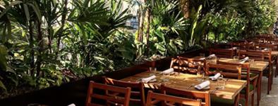 Palmares Azotea is one of Restaurantes en el DF.