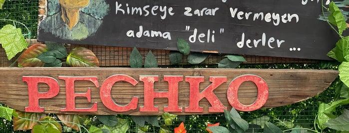 Pechko Moda is one of Gittim Gördüm Güzeldi Restaurant&Cafe.