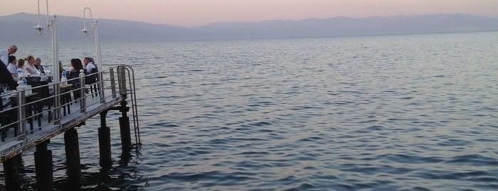 Fermani Balık by Montania is one of Bursa.