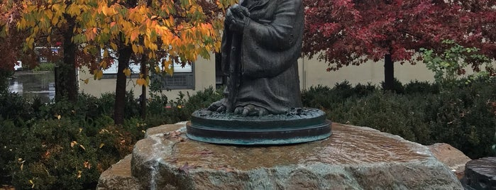 Yoda Statue is one of Marin County's Best.