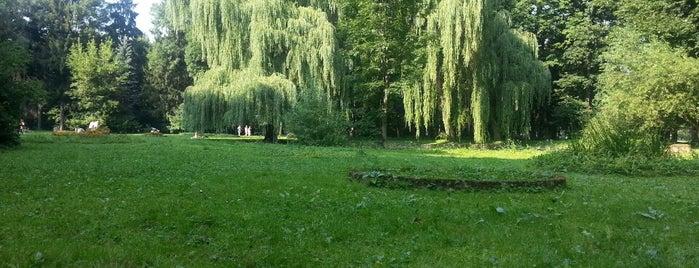 Стрийський парк is one of Lieux qui ont plu à Galia.