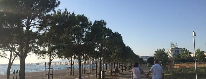 Thesaloniki Promenade is one of Orte, die 83 gefallen.