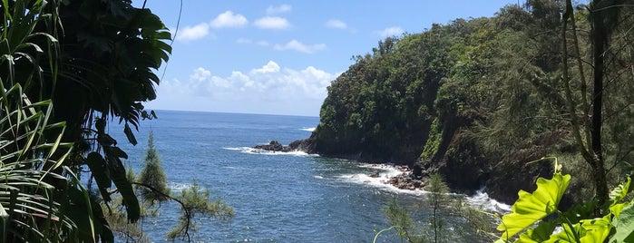 Onomea Bay is one of Enjoy the Big Island like a local.
