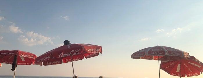 The Best Beach is one of Posti che sono piaciuti a Yunus.