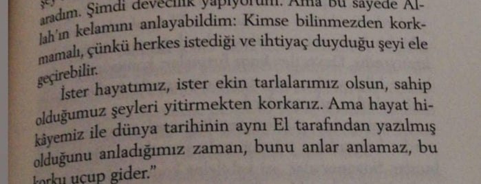 สถานที่ที่ Fenerbahçem ถูกใจ