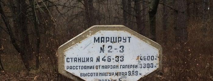 Туристическая тропа (от маршрутов №2 и №3) is one of Lugares favoritos de Anna.