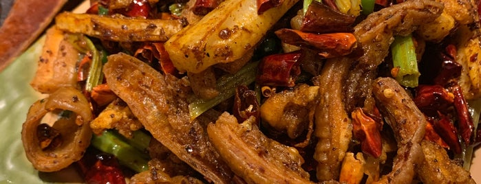 Da Xi Szechuan Cuisine is one of Locais salvos de Tyler.