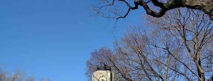 Central Park Zoo is one of Lugares favoritos de Michael.