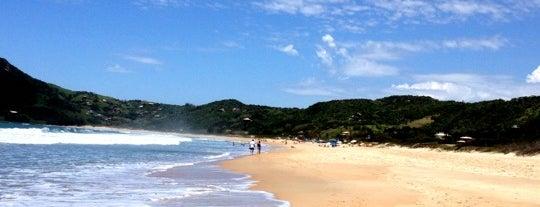 Praia da Silveira is one of Rosa e Garopaba.