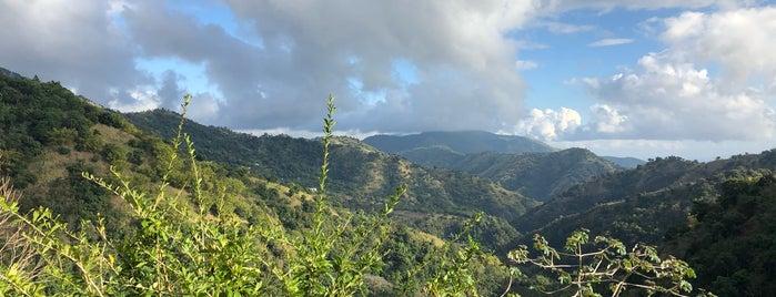 Blue Mountain Peak is one of Carribean.