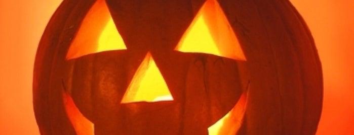 Halloween Weekend 2013 is one of สถานที่ที่ Svetlanа ถูกใจ.
