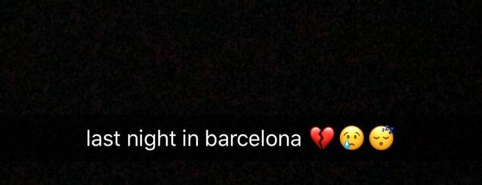 Bloom is one of Barcelona 🇪🇸.