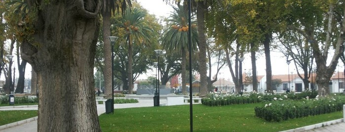 Peralillo is one of Orte, die Andres gefallen.