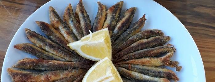 Ayvaz Balıkçılık is one of Locais curtidos por Haydar.