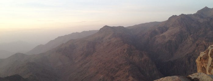 Mount Sinai is one of Тай.