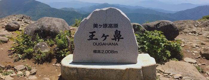 王ヶ鼻 is one of Lugares favoritos de 西院.