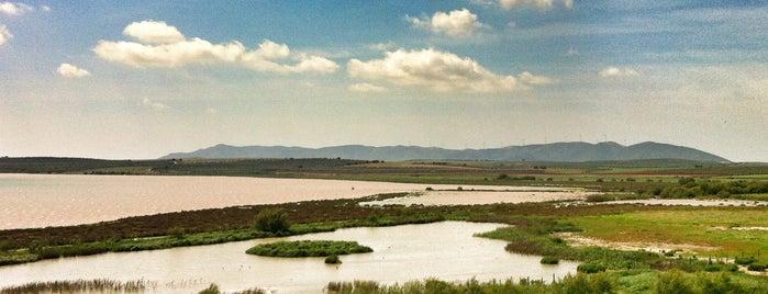 Laguna de Fuente de Piedra is one of Actividades de Ocio en Antequera.