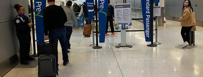 TSA Pre-Check is one of lino : понравившиеся места.