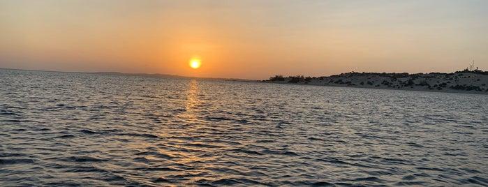 Shela, Lamu Island is one of Locais curtidos por Jenny.
