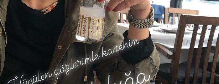 Rumeli Hisarı İskele Resturantt is one of İstanbul gidilecek mekanlar.