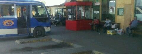Terminal de Buses Municipal de Castro is one of Chiloe 2012.