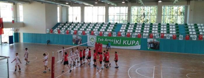Manisa Büyükşehir Belediyesi Kapalı Yüzme Havuzu ve Spor Salonu is one of Posti salvati di İsmail.