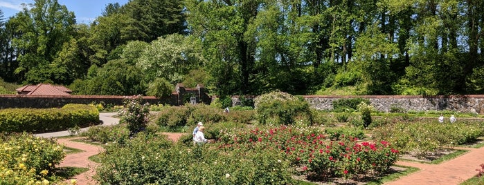 Biltmore Rose Garden is one of NORTH CACKALACKA.