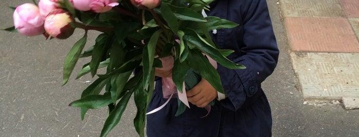 AMF - международная сеть доставки цветов is one of Где найти Shopping Guide в Москве? (часть 1).