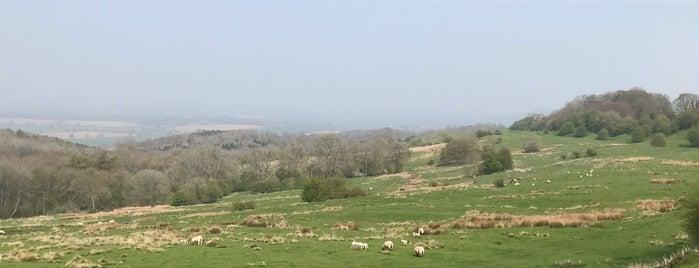 Dover's Hill is one of Lieux qui ont plu à Antonella.