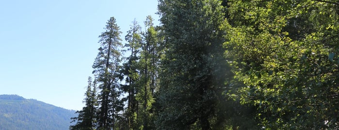Glacier View Campground is one of Camping/Hiking in Western Washington.