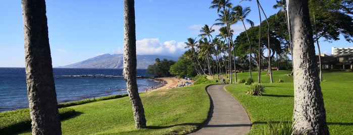 The Wailea Beach Path is one of Maui 2018.