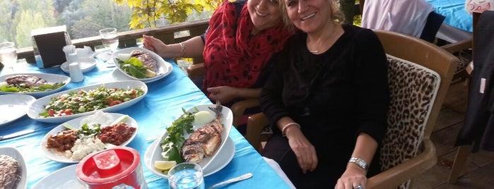 Şahin Tepesi Şelale Restaurant is one of Gönül : понравившиеся места.