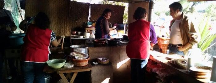Los Tepalcates is one of Orte, die Jose gefallen.