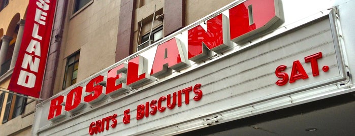 Roseland Ballroom is one of The Best Concert Venues in New York.