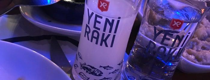 Acemi Meyhane is one of İzmir Dışı Yerler.