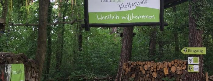 TeamImpuls Klettergarten is one of Kinder Ausflug.