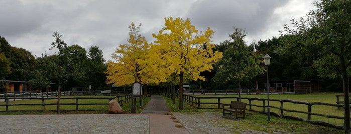 Gutshof Britz is one of Orte, die Thilo gefallen.