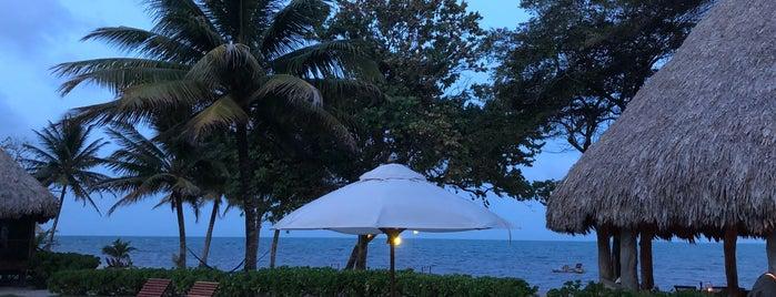 Turtle Inn is one of International: Hotels.