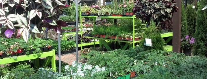 Farmer's Market Garden Ctr is one of Favorites.