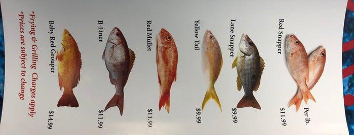 Ghadir Fish Restaurant is one of Toronto 2.